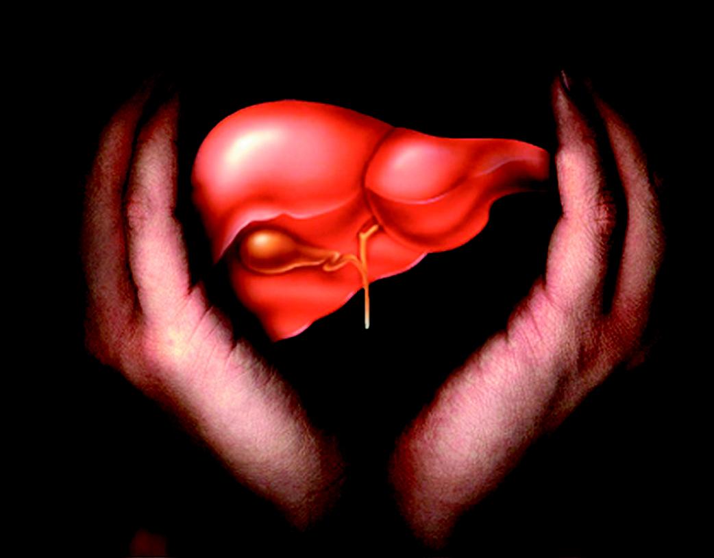 Гепатит Б  причины симптомы и лечение как передается