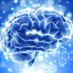 mindconnexion